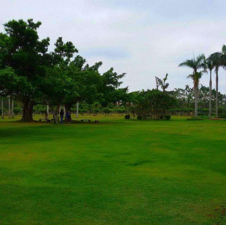 广州园中园绿化景观有限公司